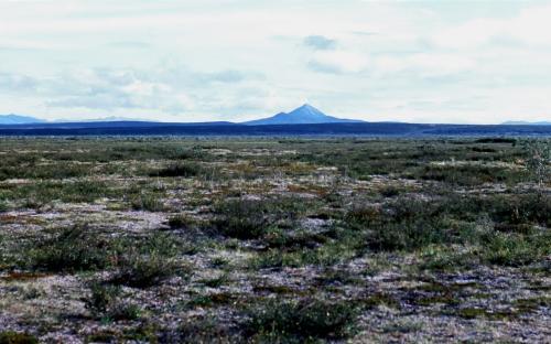 Долина реки Тылговаям