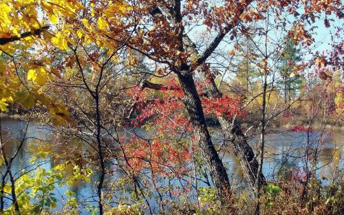 Осенняя иллюминация