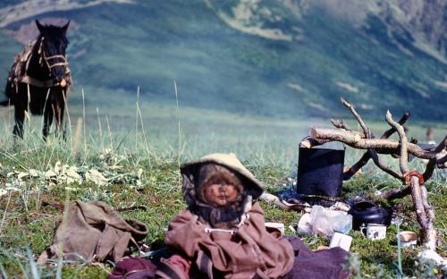 Самый юный кочевник