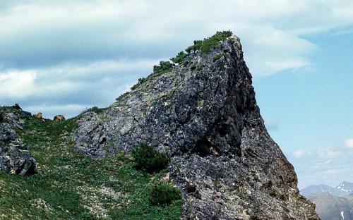 Там, где вершины вонзаются в небо