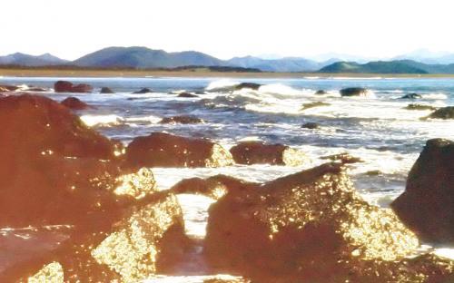 Чистое золото морской воды