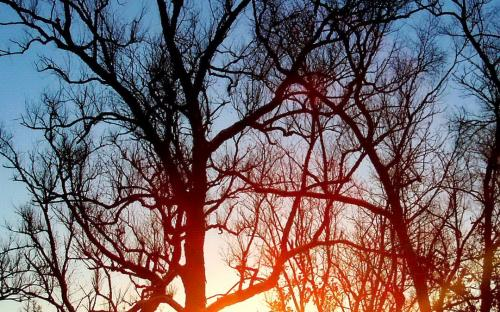 Январский восход